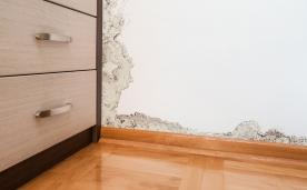 Cómo eliminar la humedad de nuestras paredes (I)